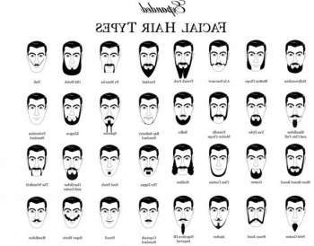 Beard styles for men with oval face. Guide To Best Hair ...