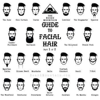 Top 10 Full Beard Styles with Names (updated)