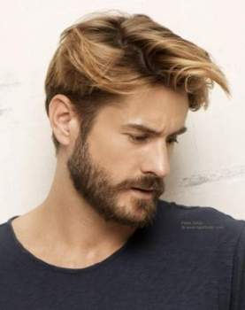 Men s Beard Styles for 2017 - 2018, How To Achieve Them