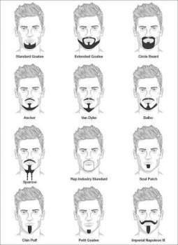 The Chin Strip, Beard Information