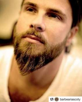 Beard shapes and styles, FACIAL HAIRSTYLES