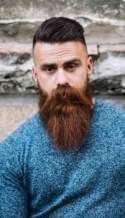 New beards style 2016