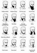 Beard cuts and styles