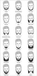 Stubble beard styles