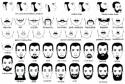 Short beard style 2016