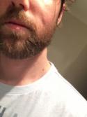 Mens new beard style 2016