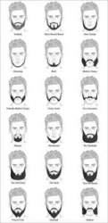 Male beard styles